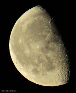måne bilde